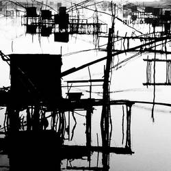 fishercots by augenweide