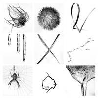 minimalism by augenweide