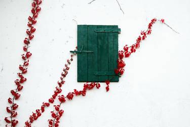 closed window by augenweide