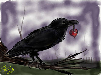 Crow by Mraul
