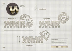 WMR Business TV - Footage Contest 2013 by EugeneStanciu