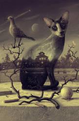 cat by 25kartinok