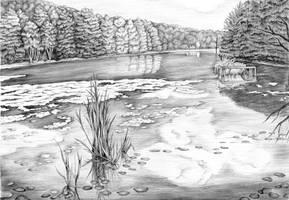 Pond by ellebieg