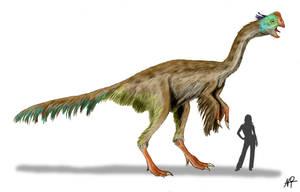 Gigantoraptor by NTamura
