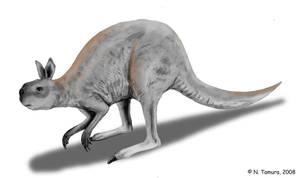 Procoptodon by NTamura