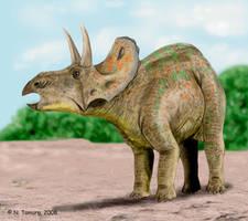 Diceratops by NTamura