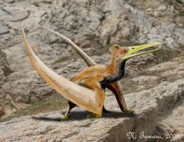 Ningchengopterus by NTamura