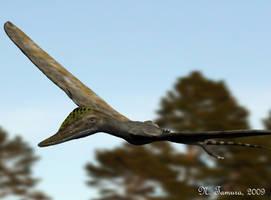 Wukongopterus by NTamura