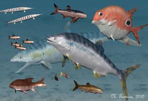 Oxfordian fish of Cuba by NTamura