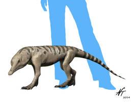 Chanaresuchus by NTamura