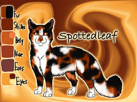 Spottedleaf of ThunderClan - Into the Wild by Jayie-The-Hufflepuff