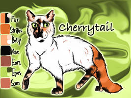 Cherrytail of SkyClan - After the Flood by Jayie-The-Hufflepuff