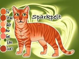 Old Sparkpelt image by Jayie-The-Hufflepuff