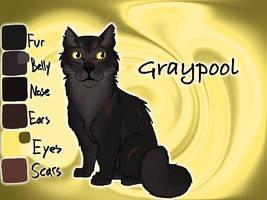 Graypool of RiverClan - A Dangerous Path by Jayie-The-Hufflepuff