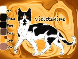Violetshine of SkyClan - The Raging Storm by Jayie-The-Hufflepuff