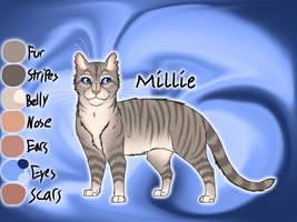 Millie of ThunderClan - Silent Sacrifice by Jayie-The-Hufflepuff