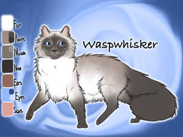 Waspwhisker of SkyClan - Sasha's Calling by Jayie-The-Hufflepuff