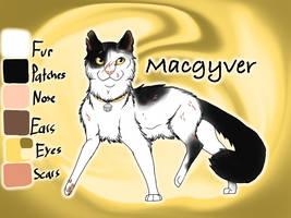Macgyver of SkyClan - Sasha's Calling by Jayie-The-Hufflepuff