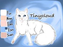 Tinycloud of SkyClan - Sasha's Calling by Jayie-The-Hufflepuff