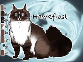 Hawkfrost of RiverClan - Sunset by Jayie-The-Hufflepuff