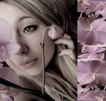 flowers by fialk-enson