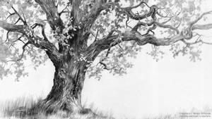 Oak tree - tutorial by micorl