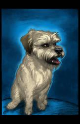 Dog Portrait by DAVIDGMILEY