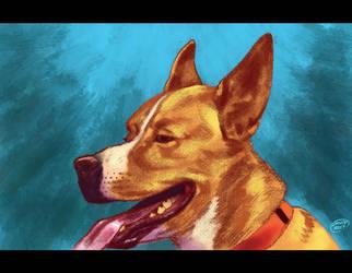 Dog Portrait Blue by DAVIDGMILEY