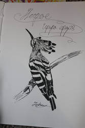 Hoopoe biro by IszyChurch