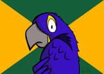 Cartoon Paranoid Parrot by petirep