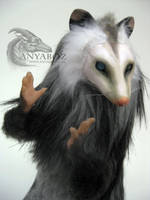 Mystic Opossum Room Guardian by AnyaBoz