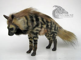 Striped Hyena Room Guardian by AnyaBoz