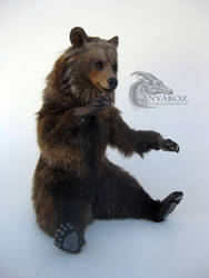 Grizzly Bear Room Guardian by AnyaBoz