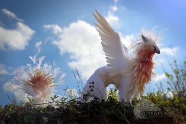 Iridescent Angel Phoenix Room Guardian by AnyaBoz