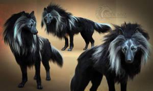 Obsidian Wolf Room Guardian by AnyaBoz