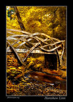 Hareshaw Linn Bridge 2 by newcastlemale