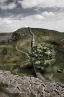 Roman Wall untextured by newcastlemale