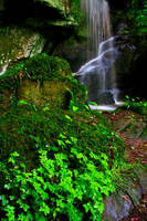 Roughting Linn Waterfall 4 by newcastlemale