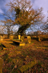 Northumberland Graveyard by newcastlemale