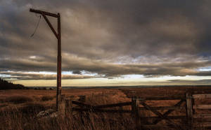 Winter's Gibbet by newcastlemale