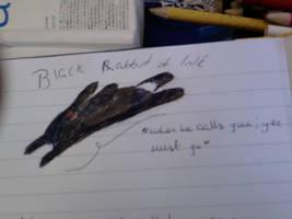 black rabbit of inle by Ginga-Ninga1994