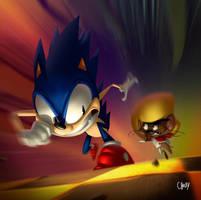 Sonic X Gonzales by fubango