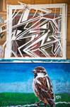 Vogelfenster by Scorpidilion