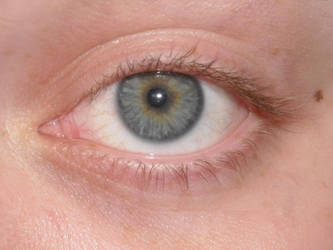Blue Eye Stock 2 by Orangen-Stock