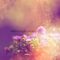 Morning Glory by Naphartiri