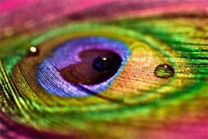 Eye of The Rainbow by Naphartiri
