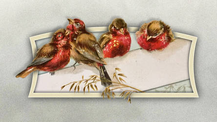 Four Fluffy Finches OOB by Devoral