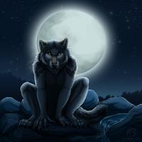 Silent Watcher by WindWo1f