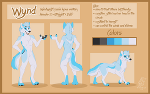 Wynd Reference Sheet by WindWo1f