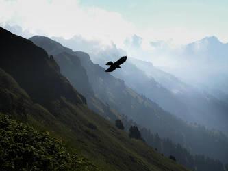The flight by edelweiss26